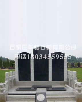 HM-CT1204